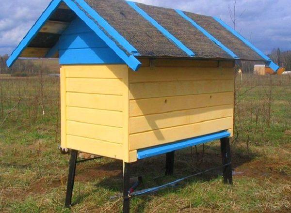 Kendi arılarınız için bir arı kovanı nasıl yapılır
