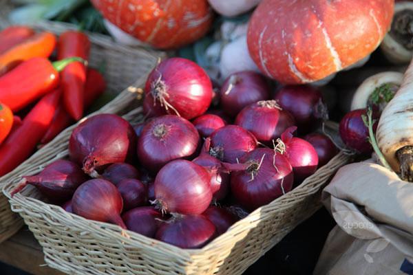 soğan kırmızı baron