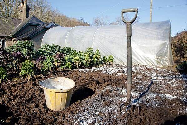 Kazma için toprak gübreleme