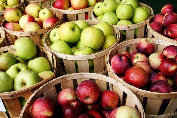 En iyi elma çeşitleri